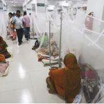 Dengue Fever Image
